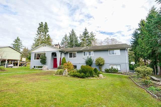 5534 129 Street, Surrey, BC V3X 3G4 (#R2532539) :: Macdonald Realty
