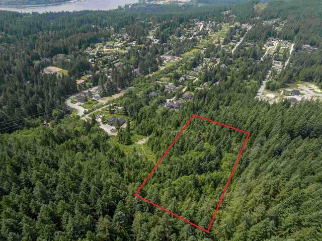 2982 Sunnyside Road, Anmore, BC V3H 4Y7 (#R2532814) :: RE/MAX City Realty