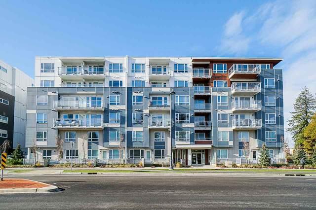 10603 140 Street #204, Surrey, BC V3T 0M8 (#R2532934) :: Macdonald Realty