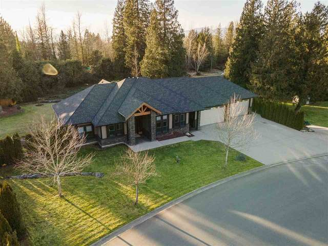 52800 Parkrose Wynd, Rosedale, BC V0X 1X1 (#R2533521) :: RE/MAX City Realty