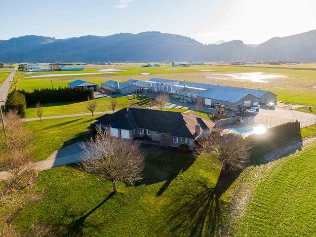 37664 Wells Line Road, Abbotsford, BC V3G 2A1 (#R2533705) :: RE/MAX City Realty