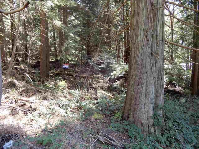 Lot 2 Forin Road, Keats Island, BC V0N 1V0 (#R2533864) :: Macdonald Realty