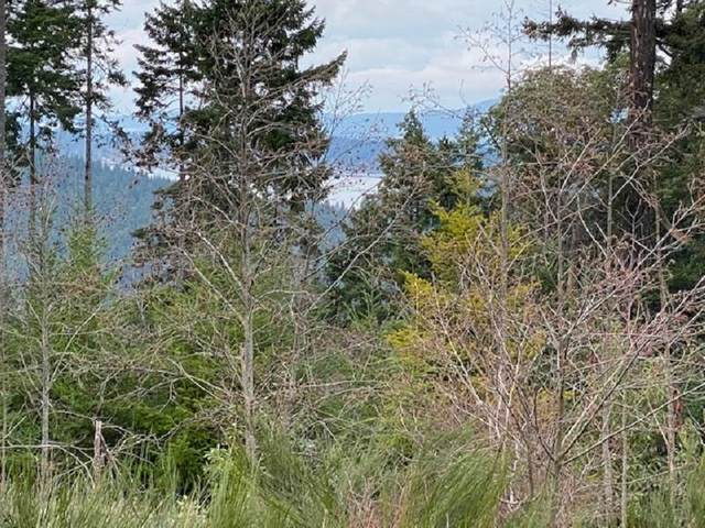 LOT 3 Northern Way, Salt Spring Island, BC V8K 2Y1 (#R2534485) :: Premiere Property Marketing Team