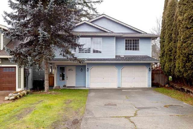 1266 Bradshaw Street, Port Coquitlam, BC V3C 5B7 (#R2535169) :: RE/MAX City Realty