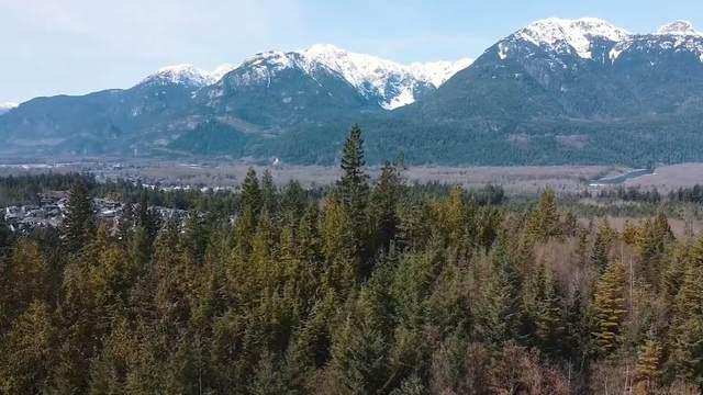 40782 Perth Drive, Squamish, BC V0N 1T0 (#R2535876) :: Macdonald Realty