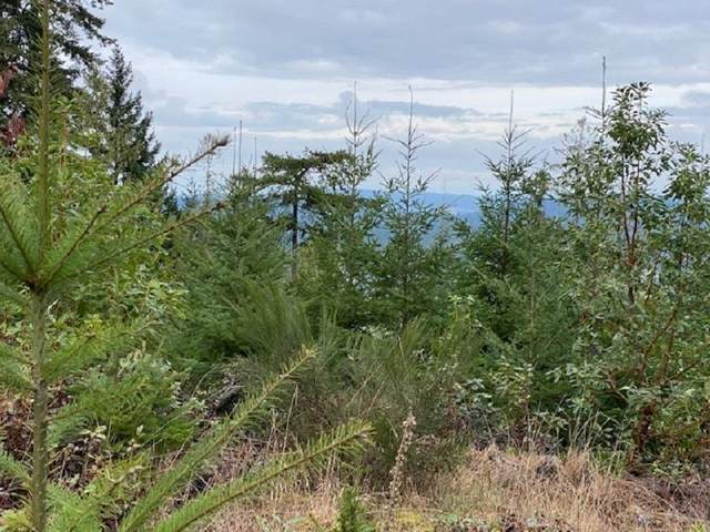 Lot 6 Northern Way, Salt Spring Island, BC V8K 2Y1 (#R2536776) :: Initia Real Estate