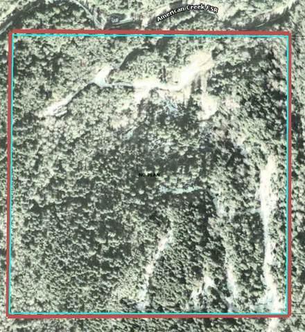 23625 American Creek Road, Hope, BC V0X 1L3 (#R2537604) :: Macdonald Realty