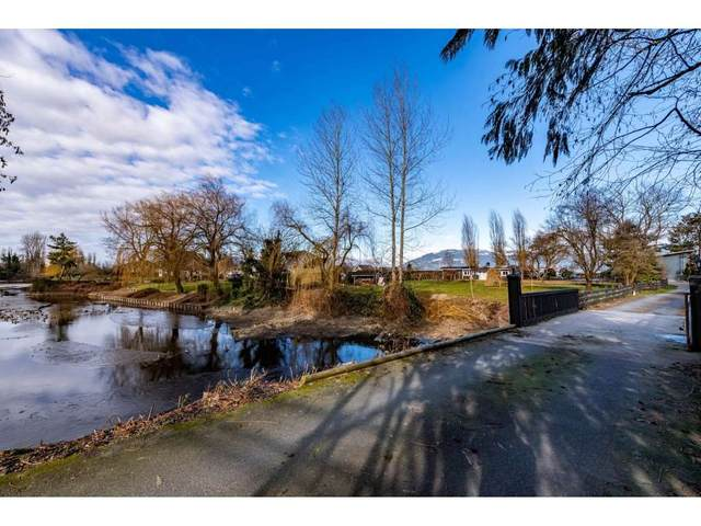 50763 Yale Road, Rosedale, BC V0X 1X2 (#R2537787) :: RE/MAX City Realty