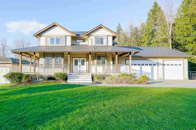 25187 130 Avenue, Maple Ridge, BC V4R 2G1 (#R2538493) :: RE/MAX City Realty