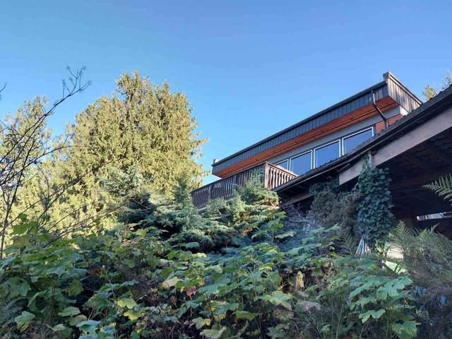 36566 Sumas Mountain Road, Abbotsford, BC V3G 3C1 (#R2538635) :: Macdonald Realty