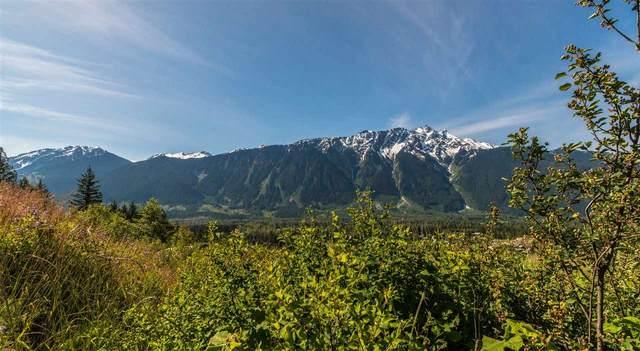 7501 Pebble Creek Drive, Pemberton, BC V0N 2L3 (#R2538916) :: Initia Real Estate