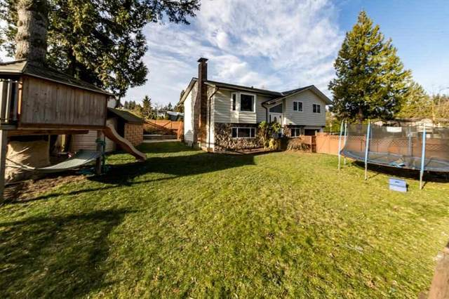 1698 Connaught Drive, Port Coquitlam, BC V3C 4G8 (#R2539150) :: RE/MAX City Realty