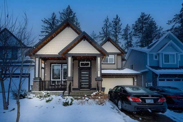12588 58A Avenue, Surrey, BC V3X 0E8 (#R2540176) :: Macdonald Realty