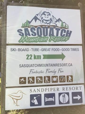46975 Snowmist Drive, Mission, BC V0M 1A1 (#R2541332) :: Macdonald Realty