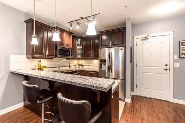 12655 190A Street #316, Pitt Meadows, BC V3Y 0E9 (#R2541348) :: RE/MAX City Realty