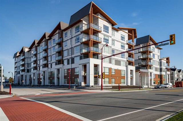 11501 84 Avenue #104, Delta, BC V4C 2L9 (#R2541479) :: RE/MAX City Realty
