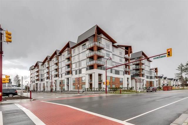 11507 84 Avenue #215, Delta, BC V4C 0E5 (#R2541556) :: RE/MAX City Realty