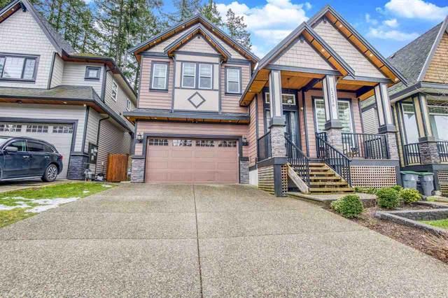 12536 58A Avenue, Surrey, BC V3X 0E8 (#R2541589) :: Macdonald Realty