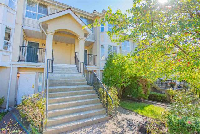 253 Casey Street #225, Coquitlam, BC V3K 7A3 (#R2541604) :: Macdonald Realty