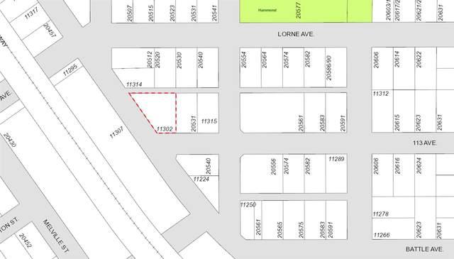 11302 Maple Crescent, Maple Ridge, BC V2X 1R1 (#R2541806) :: RE/MAX City Realty