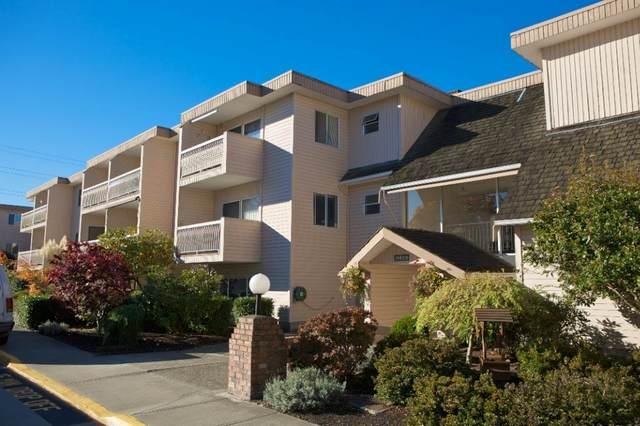 11806 88 Avenue #309, Delta, BC V4C 3C5 (#R2541849) :: RE/MAX City Realty