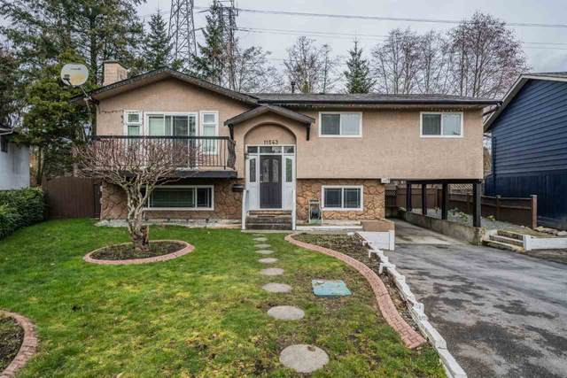 11543 73A Avenue, Delta, BC V4C 6Y5 (#R2541893) :: RE/MAX City Realty