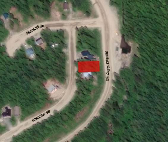 47065 Snowmist Drive, Mission, BC V0M 1A1 (#R2542207) :: Macdonald Realty