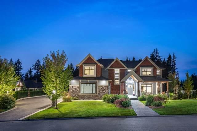 12355 267 Street, Maple Ridge, BC V2W 0E2 (#R2542540) :: RE/MAX City Realty