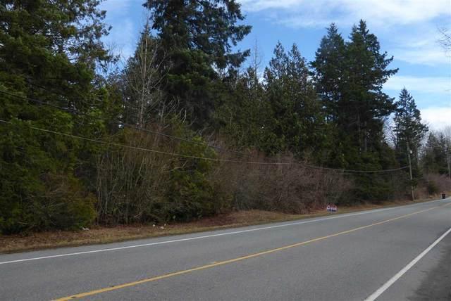 20 Avenue Pcl.A, Langley, BC V2Z 1Z3 (#R2543005) :: RE/MAX City Realty
