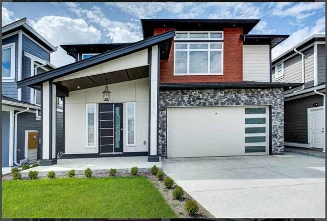 11259 238 Street, Maple Ridge, BC V2W 1V4 (#R2543059) :: Macdonald Realty