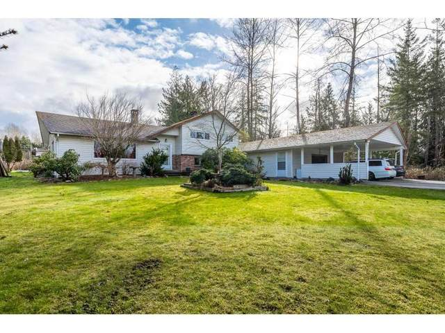 12210 244 Street, Maple Ridge, BC V4R 1L1 (#R2543078) :: Macdonald Realty