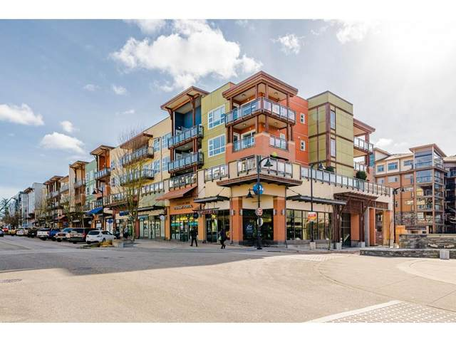 20728 Willoughby Town Centre Drive #412, Langley, BC V2Y 0P3 (#R2543104) :: Premiere Property Marketing Team