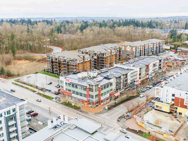 20849 78B Avenue #38, Langley, BC V2Y 0X6 (#R2543115) :: RE/MAX City Realty