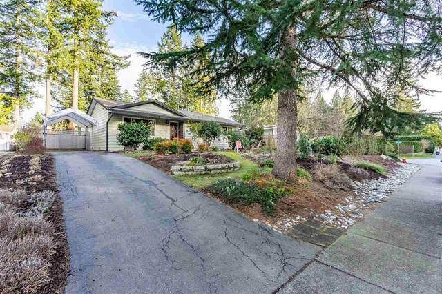 4592 200A Street, Langley, BC V3A 6M3 (#R2543978) :: Macdonald Realty