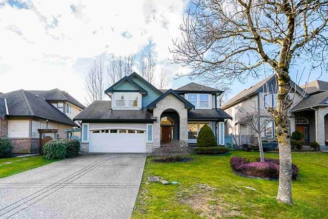 10321 167A Street, Surrey, BC V4N 5H2 (#R2544188) :: 604 Realty Group