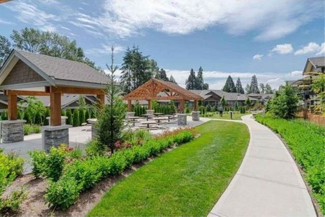 7138 210 Street #77, Langley, BC V2Y 0V7 (#R2544359) :: 604 Realty Group