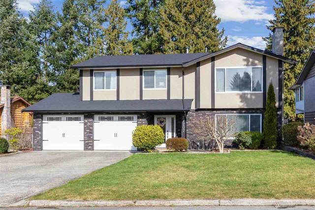 21207 Cook Avenue, Maple Ridge, BC V2X 7P7 (#R2544938) :: Macdonald Realty