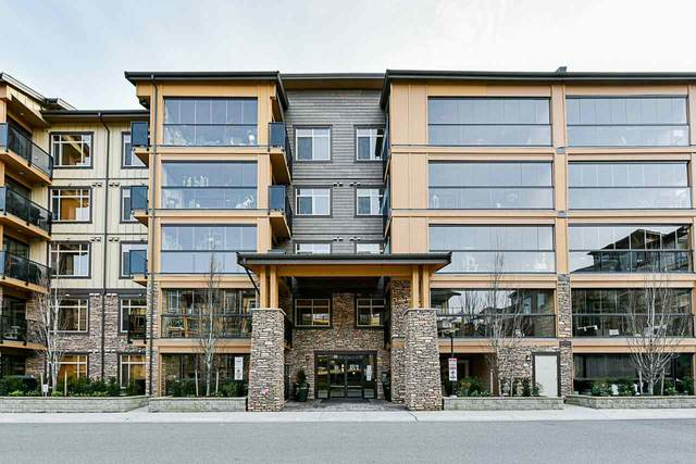 8218 207A Street #417, Langley, BC V2Y 0Y1 (#R2544971) :: Macdonald Realty