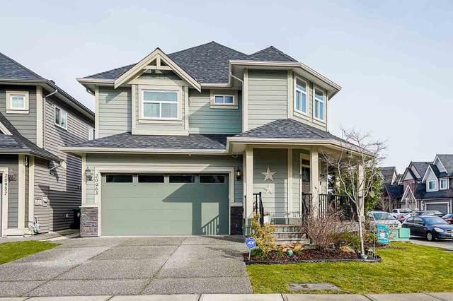 20963 80B Avenue, Langley, BC V2Y 0R2 (#R2545226) :: Macdonald Realty