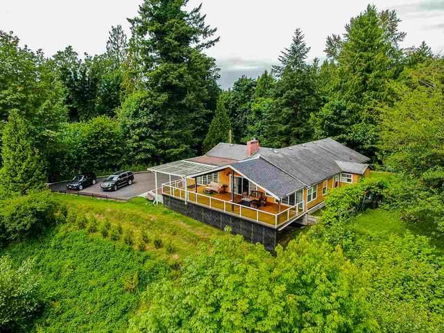 11502 Wood Street, Maple Ridge, BC V2X 4Z9 (#R2545252) :: Macdonald Realty