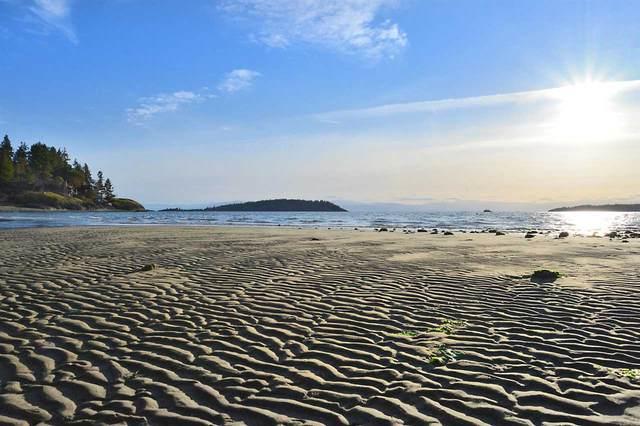 8630 Merry Island Esplanade, Halfmoon Bay, BC V0N 1Y1 (#R2545465) :: Macdonald Realty