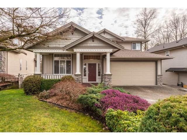 23728 110 Avenue, Maple Ridge, BC V2W 1E7 (#R2545668) :: Macdonald Realty