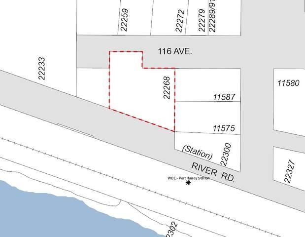 22268 116 Avenue 1-5, Maple Ridge, BC V2X 1P5 (#R2546481) :: Ben D'Ovidio Personal Real Estate Corporation | Sutton Centre Realty