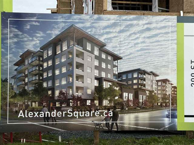 20834 80 Avenue A121, Langley, BC V0V 0V0 (#R2546482) :: Macdonald Realty