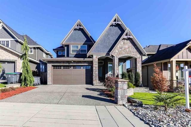 5504 189A Street, Surrey, BC V3S 6W7 (#R2546495) :: Macdonald Realty