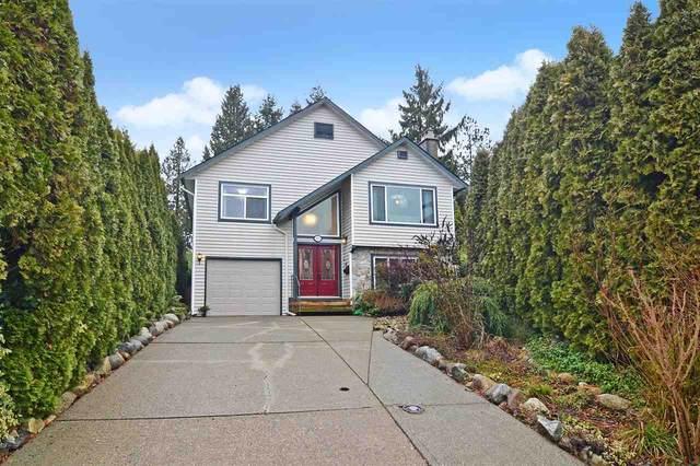 9839 149 Street, Surrey, BC V3R 8H6 (#R2546847) :: Macdonald Realty