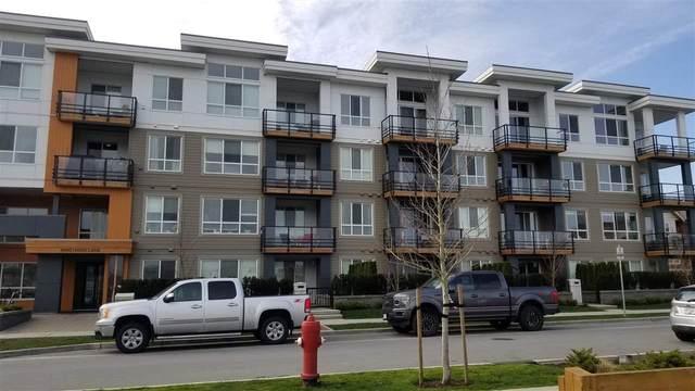 4690 Hawk Lane #424, Tsawwassen, BC V4M 0C4 (#R2553879) :: Ben D'Ovidio Personal Real Estate Corporation | Sutton Centre Realty