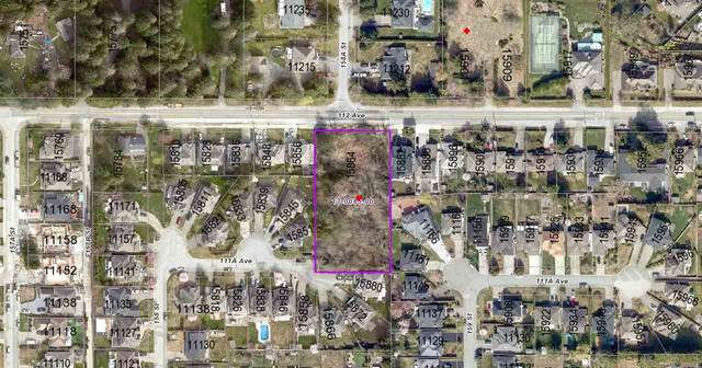15864 112 Avenue, Surrey, BC V4N 1J1 (#R2554644) :: 604 Realty Group