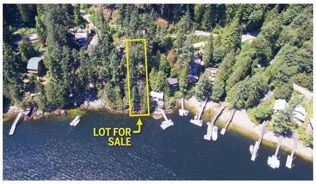 318 Sasamat Lane, North Vancouver, BC V7G 2S4 (#R2557214) :: Initia Real Estate