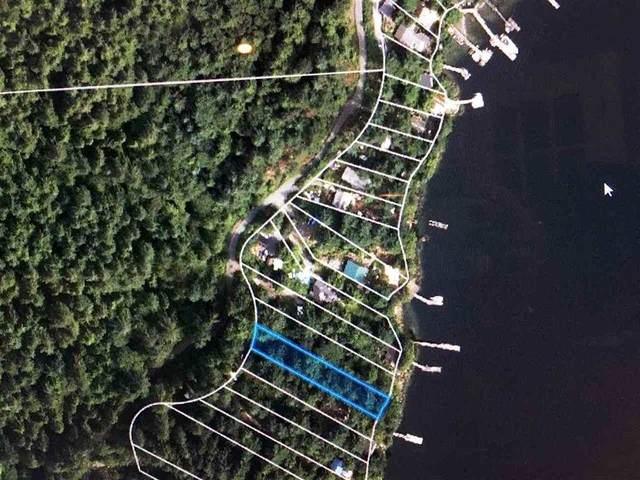 308 Sasamat Lane, North Vancouver, BC V7G 2S4 (#R2557218) :: Initia Real Estate
